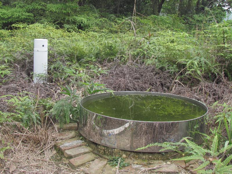 混交林OTC水分蒸发