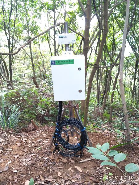 鼎湖山站站区调查点山地常绿阔叶林土壤水分观测设施