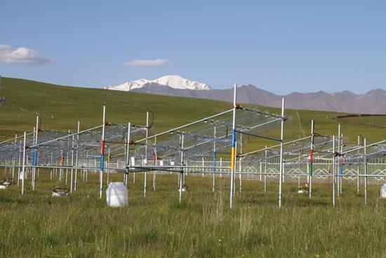 海北站增温-降水控制对高寒草甸影响观测系统