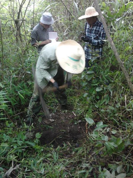 布设土壤水收集装置