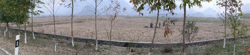 环江站清潭村甘蔗土壤、生物长期采样地