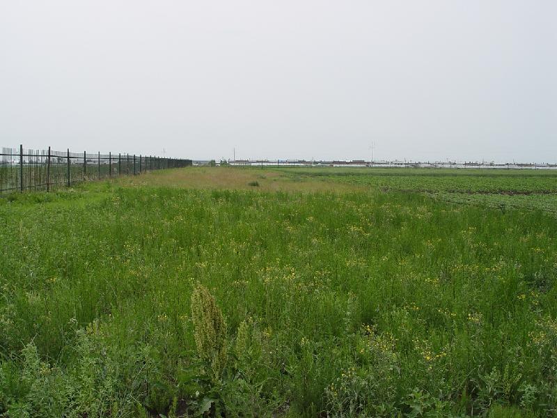 始建于1990年,已实施26年。主要用于探讨农田黑土生态系统退化机理及恢复途径。
