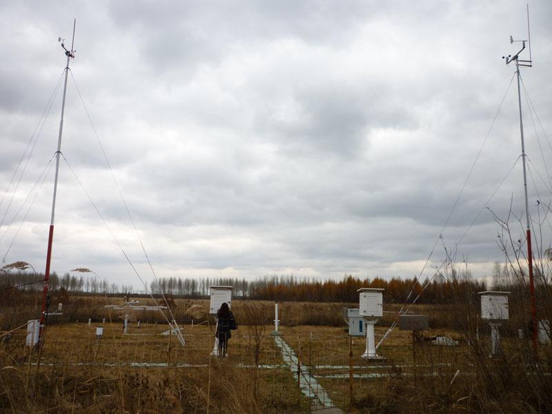 三江站气象观测场