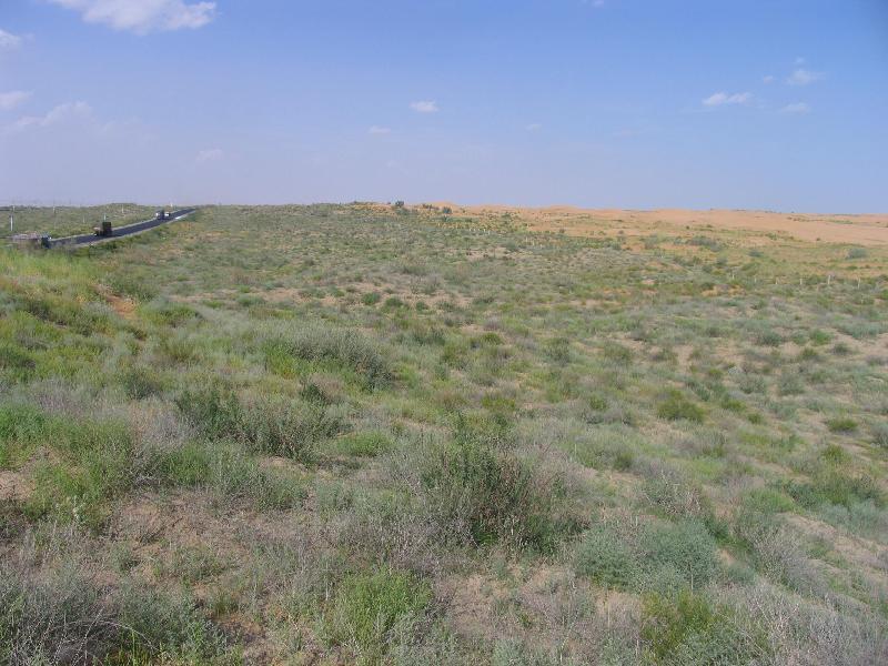 沙坡头站荒漠生态系统辅助观测场