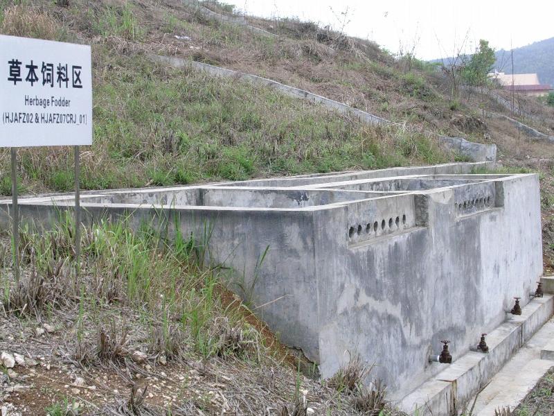 环江站坡地草本饲料辅助观测场人工径流池